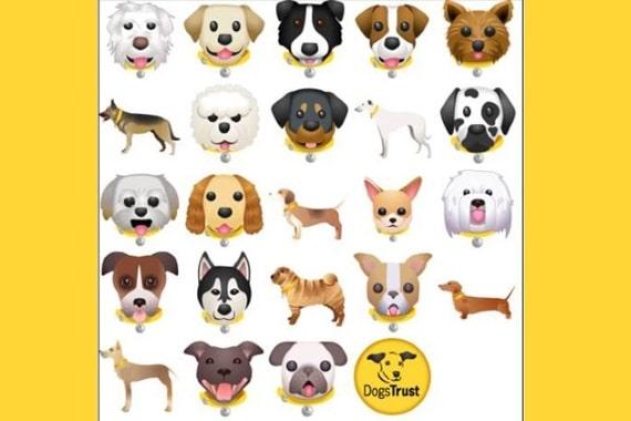 אפליקציות לכלבים