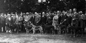 first time there was ever a german shepeared dog displayed in 1882