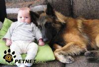היתרונות עבור ילדים בהחזקת חיות מחמד