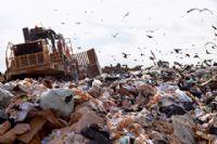 איכות הסביבה - שומרים על איכות חיי בעלי החיים