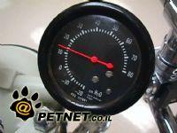 לחץ דם בחתולים וכלבים