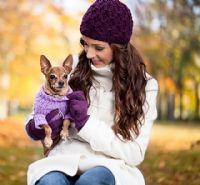 כלבים טובים באריזות קטנות - נסו את הננסיים