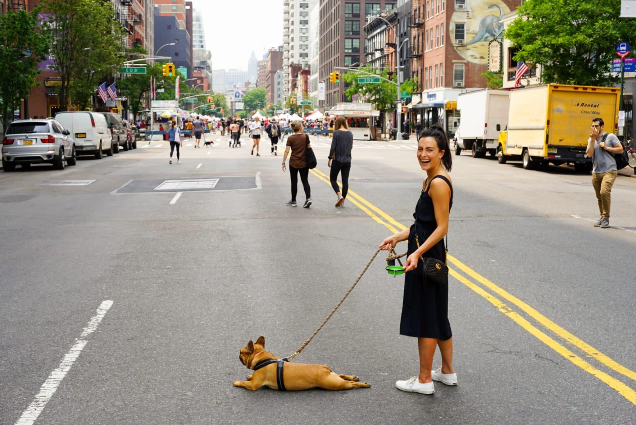 יום כיפור בטוח עם כלבים